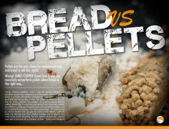 Bread vs Pellets