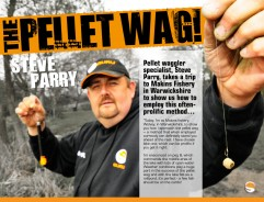 Master The Pellet Waggler - Steve Parry