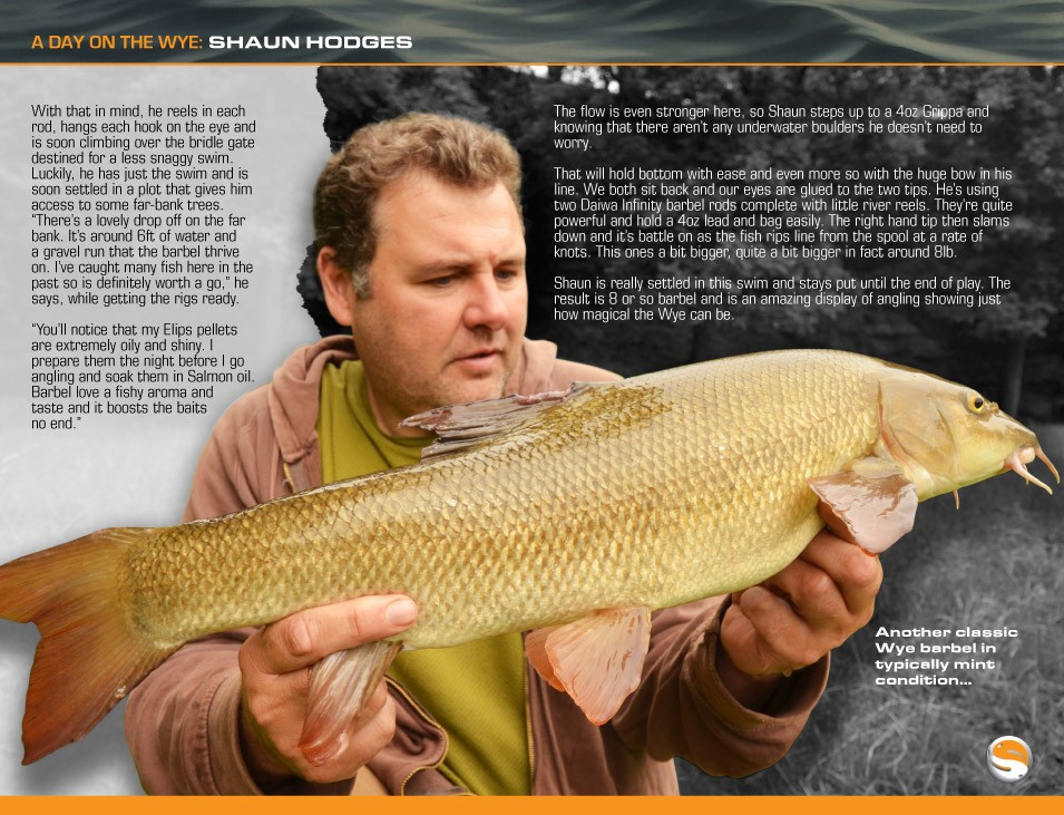 Barbel Tactics - Shaun Hodges