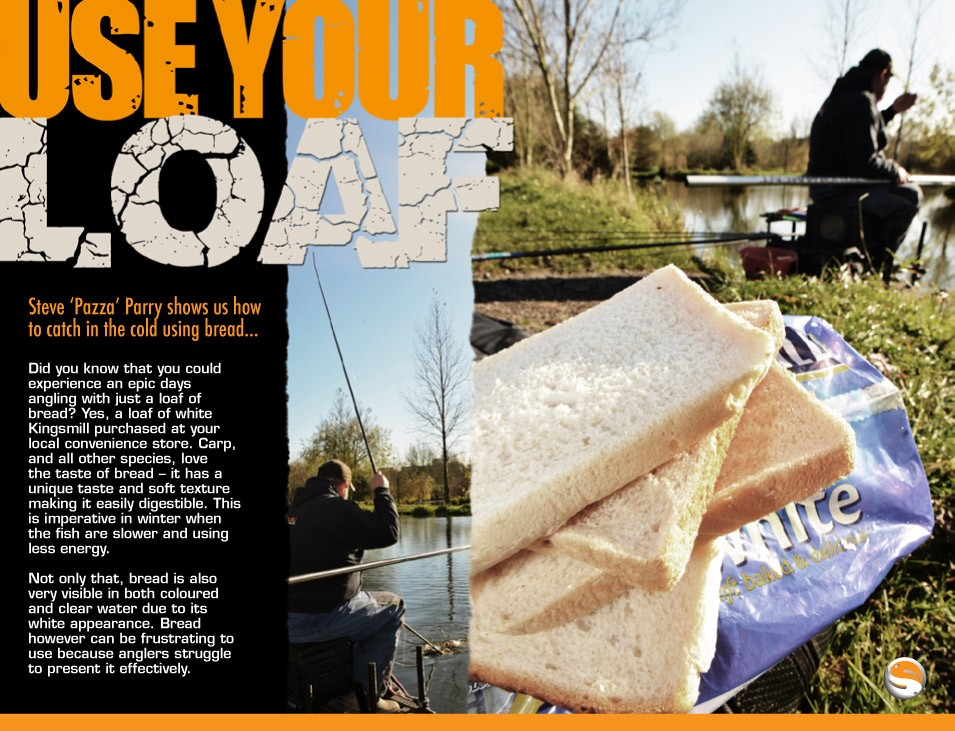 Use Your Loaf - Steve Parry