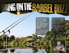 Awesome autumn barbel tips!