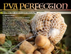 PVA Perfection!
