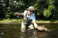 Not all the Wye barbel are huge