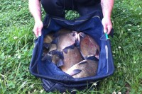 A switch to a pellet hook bait saw James bag up on bream