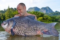 The real highlight were a run of huge SIamese carp