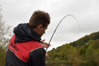A hard fighting barbel showing Adam who's boss