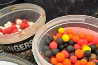 Ringers Allsorts are a great go-to hook bait for winter