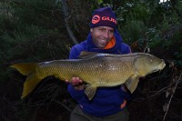 This one is a common Spanish barbel